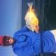 Orange Filefish