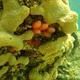 Strawberry Tunicate