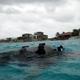 Bonaire Pictures